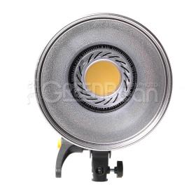 Осветитель светодиодный GreenBean SunLight 200 LEDX2 BW-3