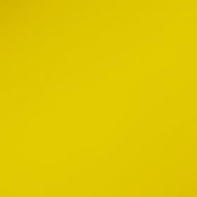 Фон бумажный Falcon Eyes 14 BackDrop 2.72x10 (жёлтый)