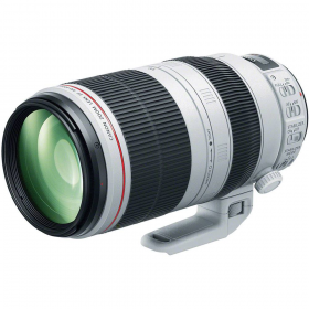 Canon EF 100-400mm F4.5-5.6L IS II USM-1