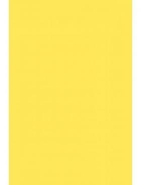 Фон пластиковый 1,0х1,4м (желтый)